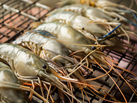 Raw shrimps (Giant Malaysian Prawn) on flaming grill