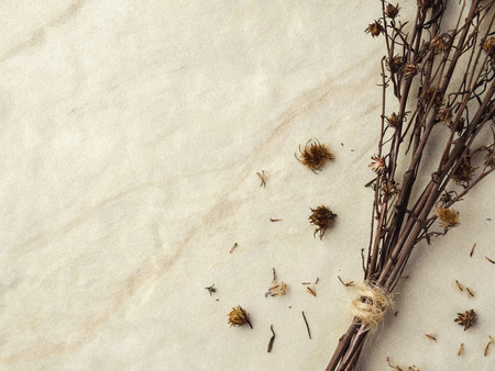 Close-up bouquet of four dried and wilted Gypsophila flowers on matt marble background with copy space