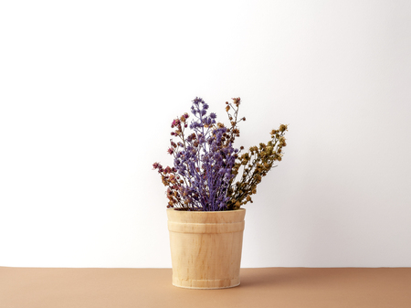 Group of bouquet dried and wilted multiple color Gypsophila flowers in wood bucket on brown floor and white background