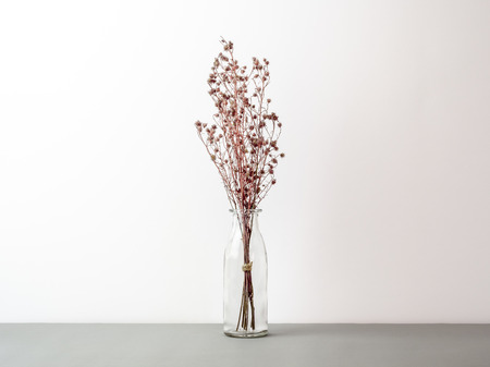 Bouquet of dried and wilted red Gypsophila flowers in glass bottle on gray floor and white background