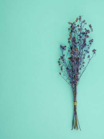 Top view bouquet of dried and wilted purple Gypsophila flowers on blue background with copy space