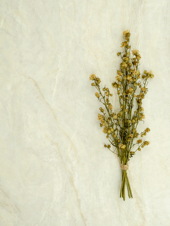 Top view bouquet of dried and wilted green Gypsophila flowers on matt marble background with copy space
