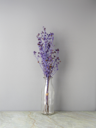 Bouquet of dried and wilted purple Gypsophila flowers in glass bottle on matt marble floor and gray background