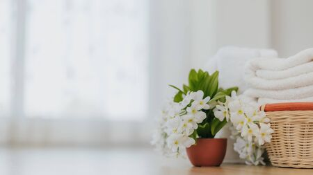 Flower pot with laundry soft white towel in bathroom with copy space. Hygiene and healthy life concept.