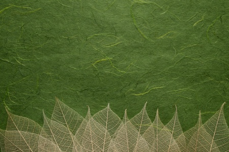 Leaves on mulberry paper background photo