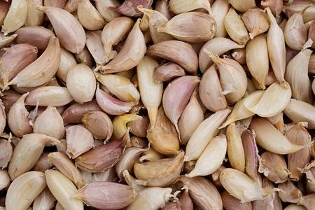 Garlic Stock Photo - 10428883
