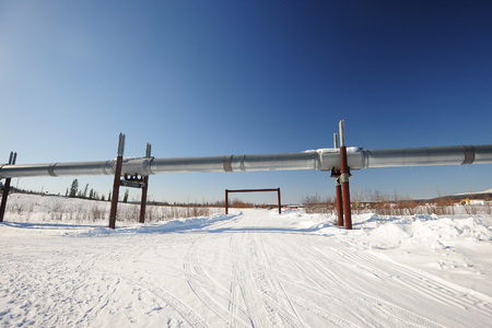 oil pipeline in alaska in winter near dalton highway photo