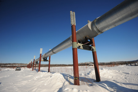 trans-alaska oil pipeline along dalton highway in winter photo
