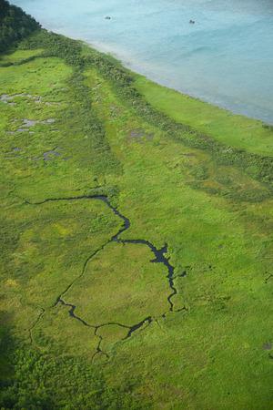 king salmon: an aerial view of alaska wetland near king salmon