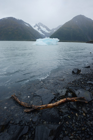 portage: blue iceberg from portage glacier in alaska