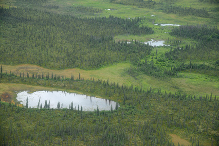 king salmon: an aerial view of alaska wetland in katmai national park near king salmon