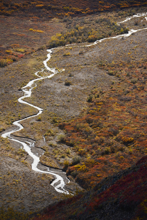 delta: river delta in denali national park alaska