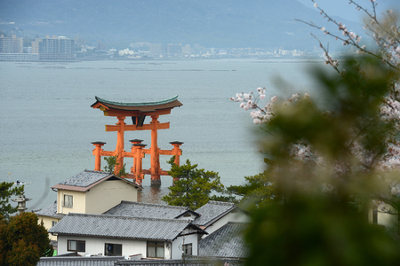 red gate at miyajima with cherry blossom Stock Photo
