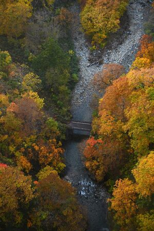 Autumn forest in a river valley in Tohoku region near Aomori Stock Photo - 137698812