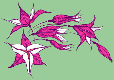 pink flower on green background  Illustration