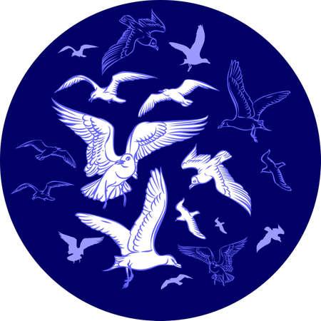 seagulls Stock Vector - 13763227