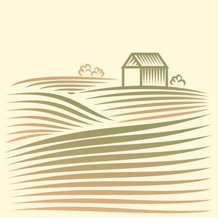 champ de mais: Paysage rural avec les champs et les maisons