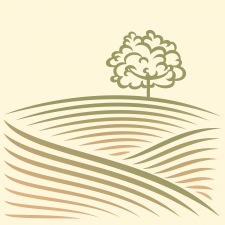Rural landscape with fields and tree