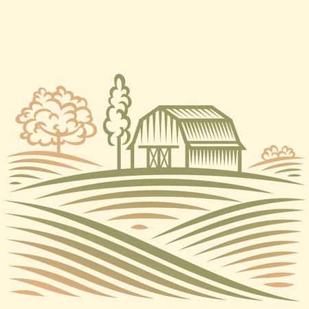 agriculture landscape: Agriculture Landscape with Barn and trees. American Farm