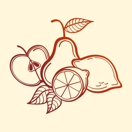 Vector Fruits. Apple, pear and lemons. line art