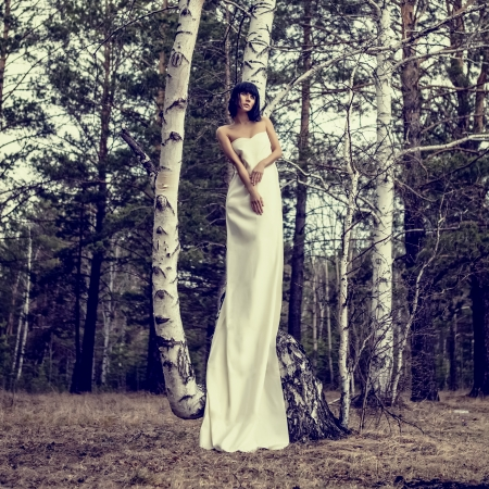 Portrait of romantic girl in forest photo