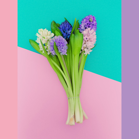 colores pastel: Beautiful bouquet. Aroma of Spring. Minimalist fashion. Pastel colors trend