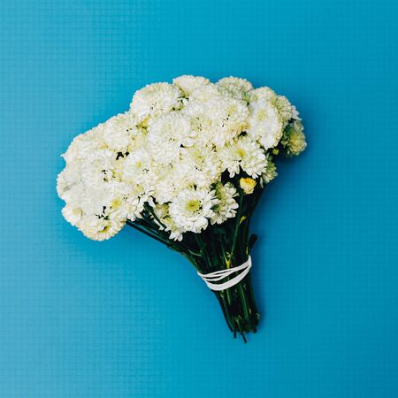 arrangements: White Bouquet on blue background. Fashion. Minimalism. details