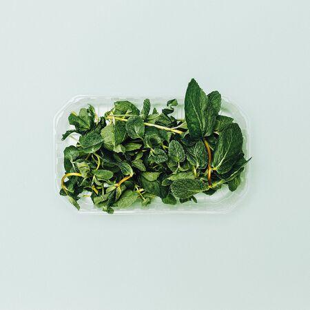 odorous: fresh peppermint. minimal style