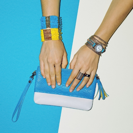 Trend Accessories. Jewelry and Clutch. Fashion Lady Style.
