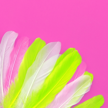 Feathers art design fashion pink color trend Stock Photo