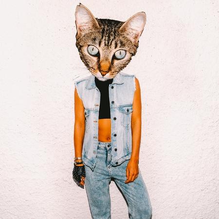 art collage cute cat man