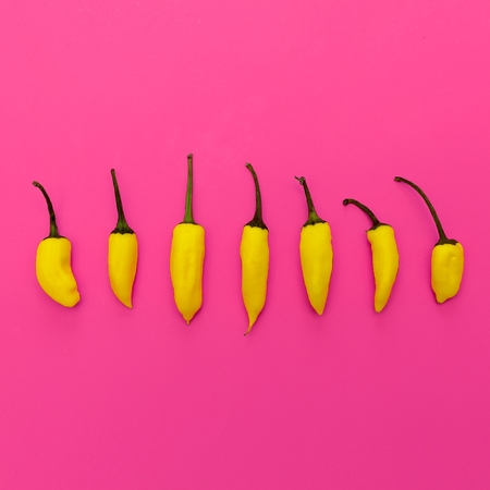 Yellow pepper. Minimal art design 版權商用圖片