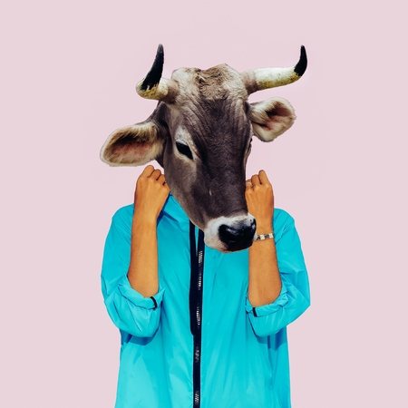 Hipster Cow Minimal collage art. Surreal design Stock Photo