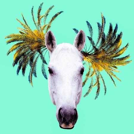 Fashion collage minimal. Photo manipulation. Horse and Palm Hipster art.
