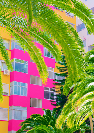 Colorful minimal art. Hotel. Bright tropical mood