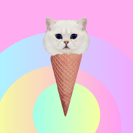 Kitty ice cream. Contemporary art collage. Funny Fast food project