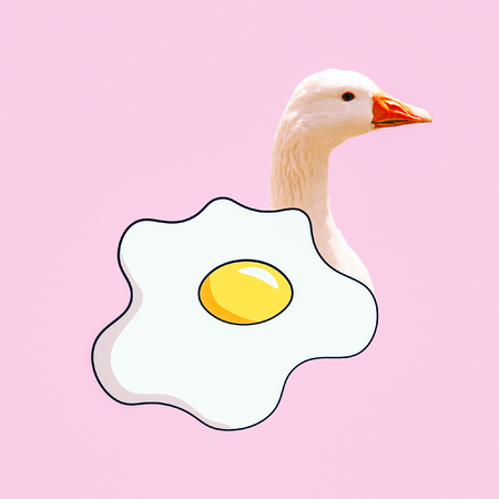 Scrambled eggs goose. Contemporary art  collage. Funny Fast food minimal project