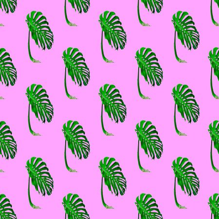 Seamless pattern. Palm leaf. Use for t-shirt, greeting cards, wrapping paper, posters, fabric print.