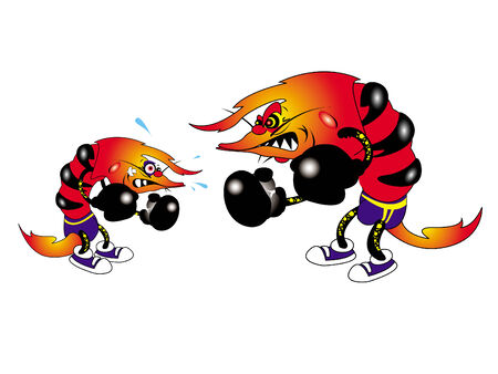 fighting fish: vector illustration of cartoon boxer shrimps duel  Illustration