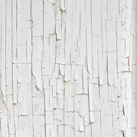disintegration: Texture of disintegration white paint on wood