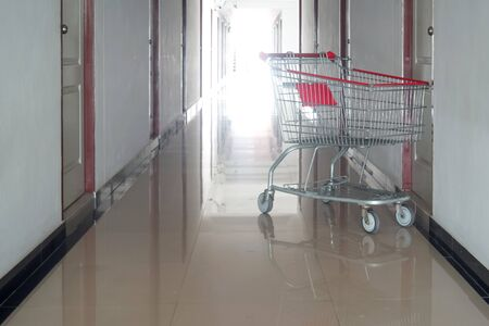 business concept; shopping cart in front of door ;fast delivery Foto de archivo