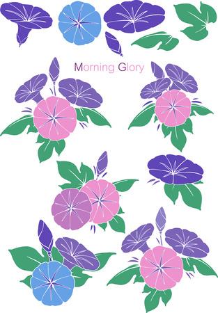 Patterns Morning Glory set Vector