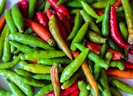 red chilli: green and red chilli