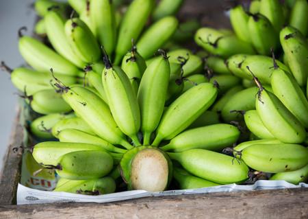 factions: young green bananas