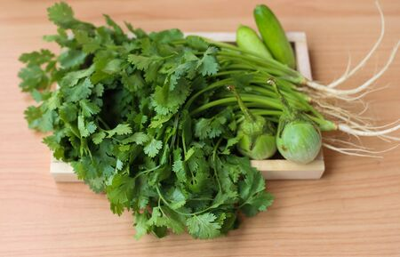 antecedents: coriander leaves with green eggplant and cucumber with wooden background