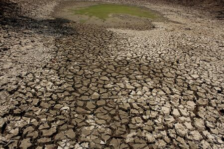 antecedents: cracked earth at dry season Stock Photo