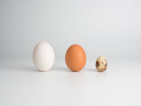 3 types of eggs concept on a white background: duck egg, chicken egg, quail egg. Placed in front to show different color and size characteristics.