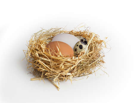 3 types of eggs in the nest on a white background: duck egg, chicken egg, quail egg. Placed to show different color and size characteristics, in addition raw eggs is ingredients for Cooking and Baking 版權商用圖片