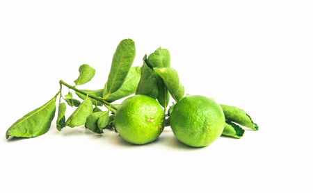 Thai lemon and green leaves isolated on white