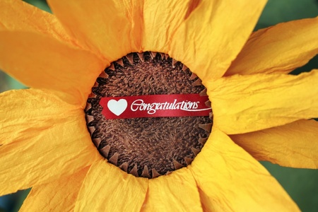 paper sun flower and congratulations tag. photo
